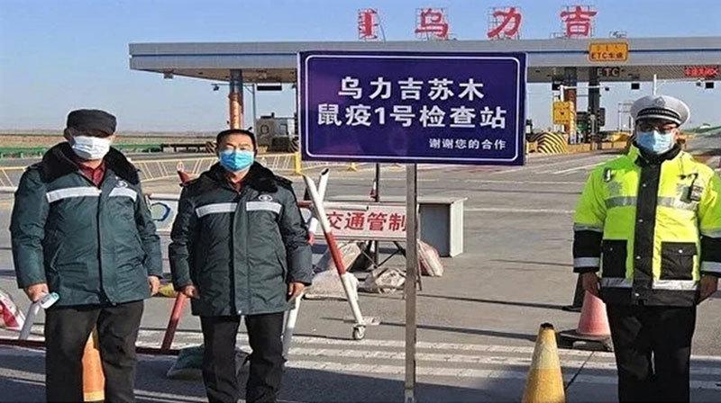鼠疫真相 內蒙至京設三道防線 河北祕密防疫月餘