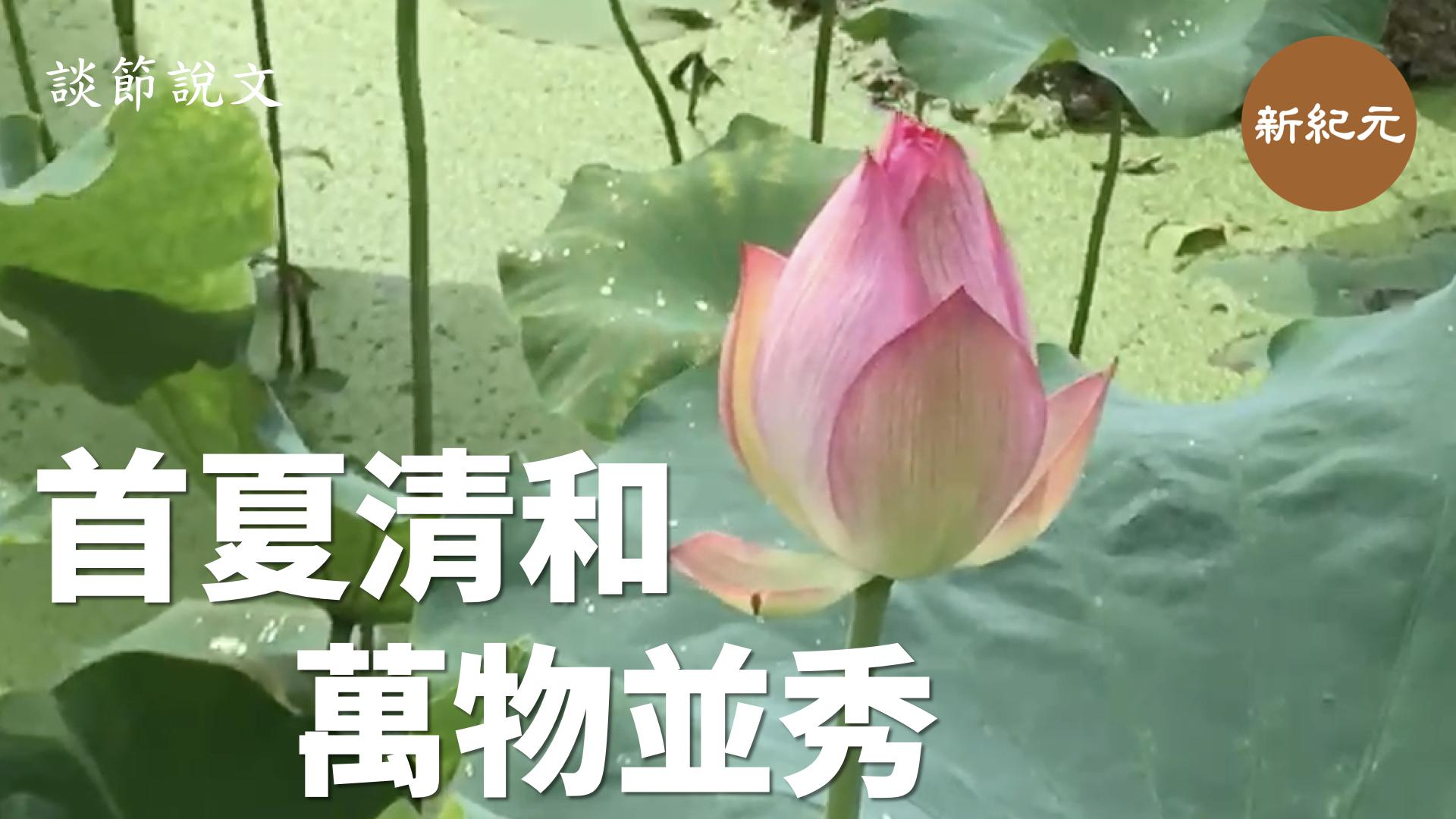 【談節說文】首夏清和 萬物並秀 (影像第十五集上)| #新紀元