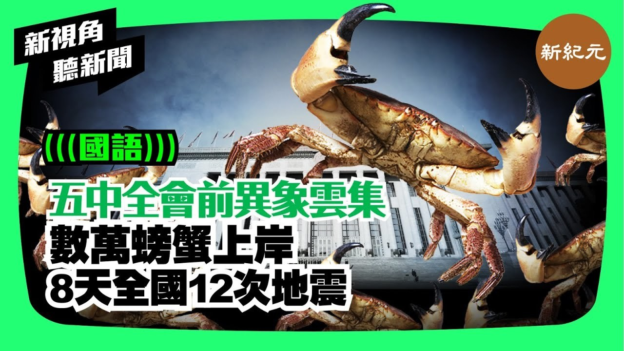 【新視角聽新聞 #15】五中全會前異象雲集,數萬螃蟹上岸,8天全國12次地震