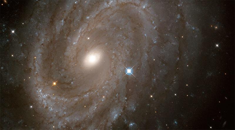 最新研究:我們來自遙遠宇宙 並非地球所生