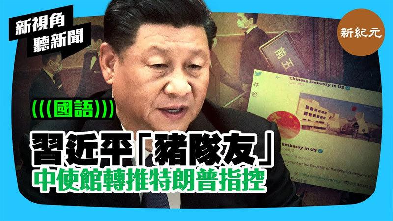 【新視角聽新聞 #263】習近平有「豬隊友」中使館轉推特朗普指控
