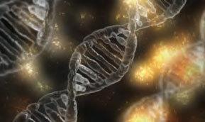 從分子生物學看進化論遭遇的挑戰