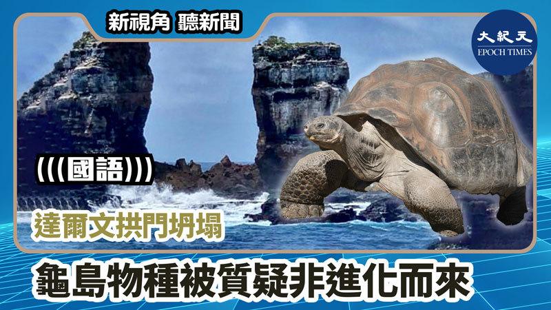 【新視角聽新聞 #947】達爾文拱門坍塌 龜島物種被質疑非進化而來