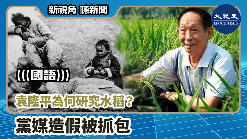 【新視角聽新聞 #956】袁隆平為何研究水稻?黨媒造假被抓包
