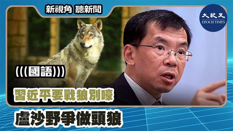 【新視角聽新聞 #1055】習近平要戰狼別嚎  盧沙野爭做頭狼