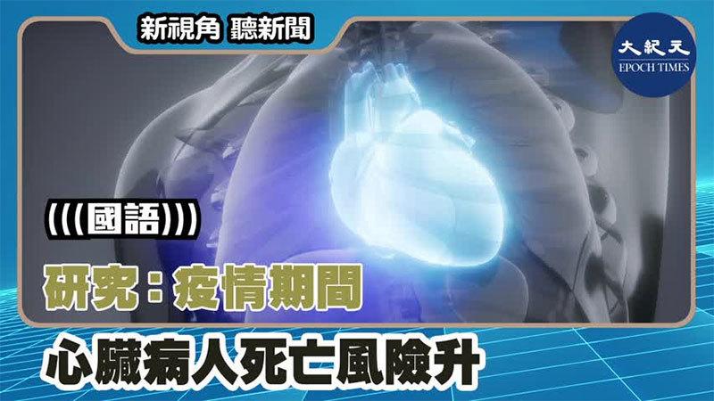 【新視角聽新聞 #1393】研究:疫情期間 心臟病人死亡風險升