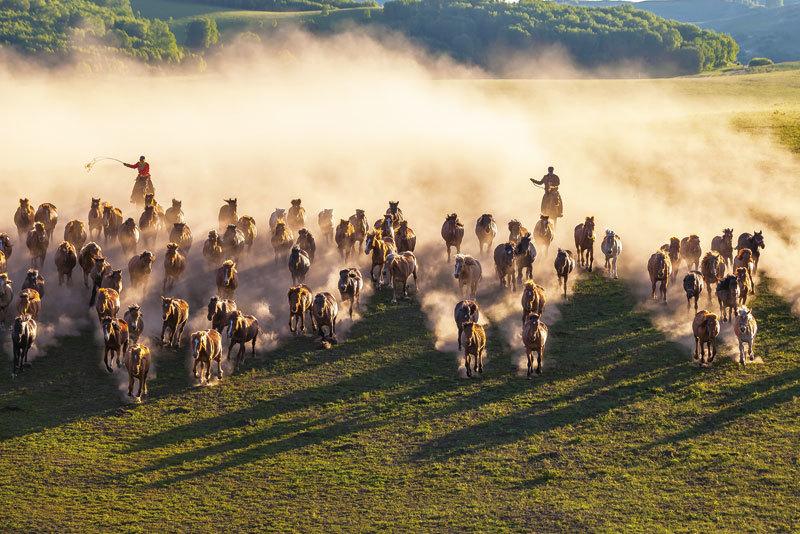 聆聽神韻交響樂團演奏《大汗》之隨想 跟著大汗的戰馬馳騁草原