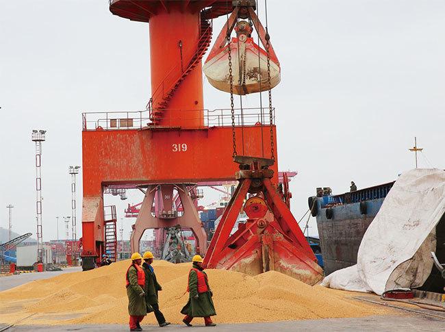 美中貿易戰升溫的關鍵一物:大豆