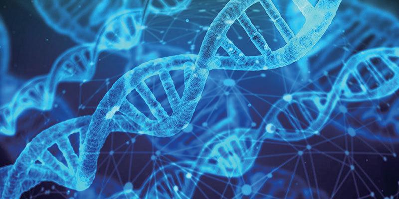 >人類基因五分之一並非「真實」